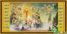 NV025 - Phật đản