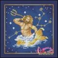 Bảo Bình - Aquarius (20/01 - 18/02)